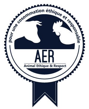 Logo-aer-version-2